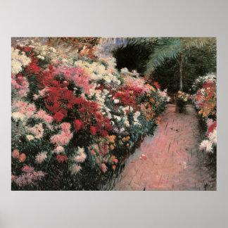 Chrysanthemums Floral Poster