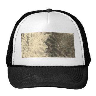 chrysanthemums hats