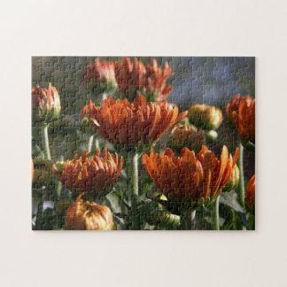 Chrysanthemums Puzzle
