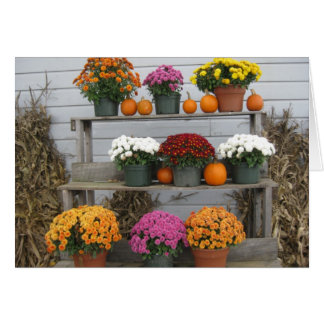 Chrysanthemums with pumpkins card