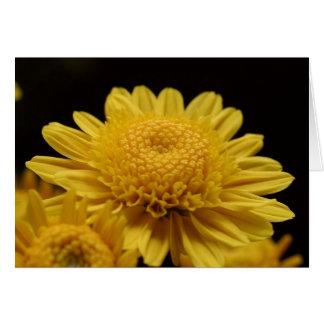 Chrysanths amarillo tarjeta de felicitación