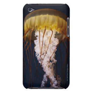 Chrysaora fuscescens,  Pacific Sea nettle iPod Touch Cover