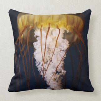 Chrysaora fuscescens,  Pacific Sea nettle Pillow