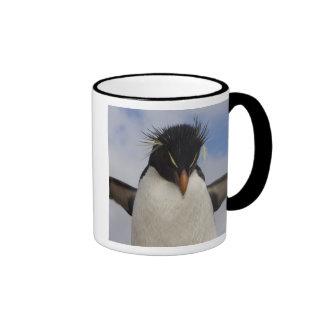 Chrysocome del Eudyptes del pingüino de Rockhopper Taza De Café