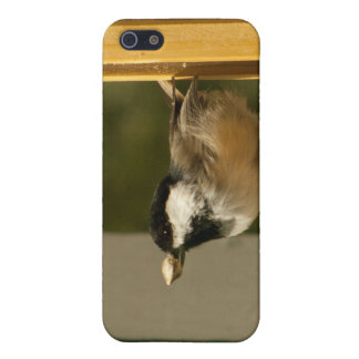 CHSC Chickadee Scores Cases For iPhone 5