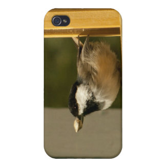 CHSC Chickadee Scores iPhone 4/4S Cases
