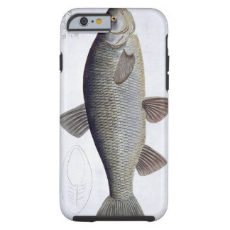 Chub (Cyprinus Jeses) plate VI from 'Ichthyologie, Tough iPhone 6 Case