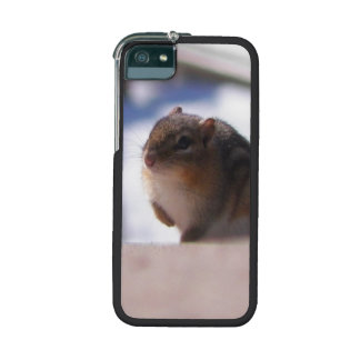 Chubbers the Chipmunk Cover For iPhone 5/5S