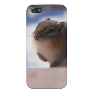 Chubbers the Chipmunk iPhone 5 Covers