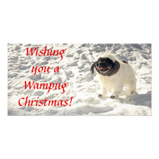 Chubbs The Wampug Christmas Card Personalized Photo Card