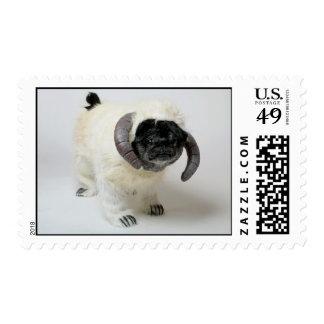 Chubbs the Wampug Postage Stamp