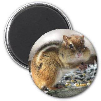 Chubby Cheeks Magnet