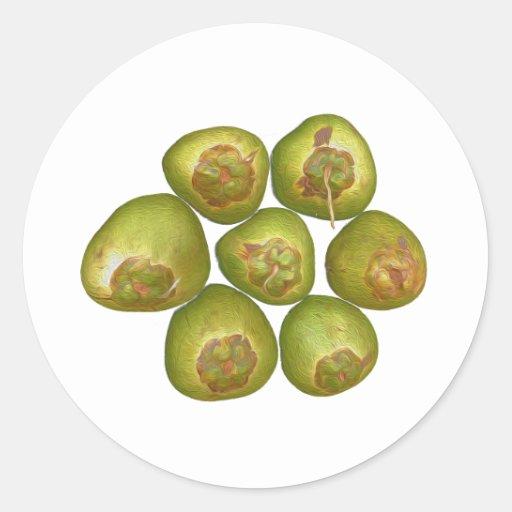 Chubby Green Coconut Round Sticker