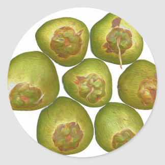 Chubby Green Coconut Stickers