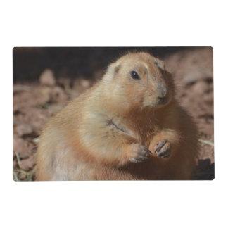Chubby Prairie Dog Laminated Placemat