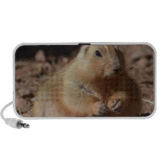 Chubby Prairie Dog Laptop Speaker