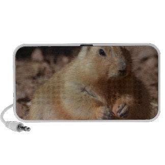 Chubby Prairie Dog Mini Speakers