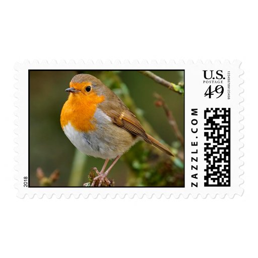 Chubby Robin Postage