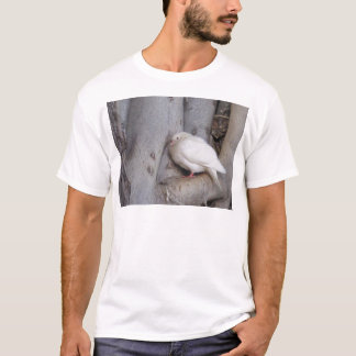 Chubby white dove in tree T-Shirt