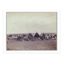 Chuck Wagon Postcard