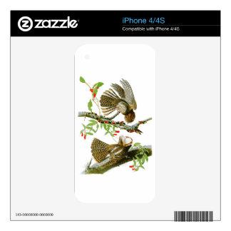 Chuck-will's Widow John Audubon Birds of America iPhone 4S Skins