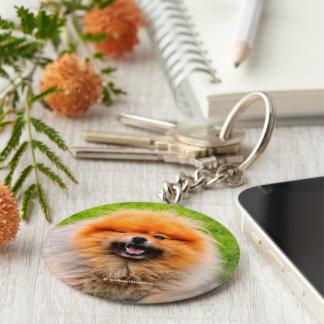 Chuckling Pomeranian: Did I Say Something Funny? Basic Round Button Keychain