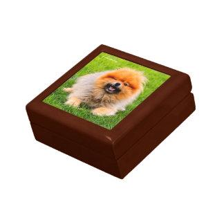 Chuckling Pomeranian: Did I Say Something Funny? Keepsake Box