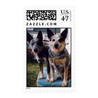 CHUCKY AND SYDNEY STAMPS