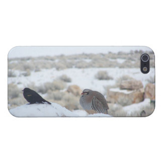 Chukar & Friends iPhone Cover - Savvy Cases For iPhone 5