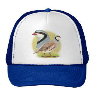 Chukar Partridge Combo Trucker Hat