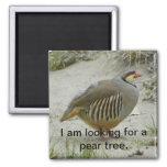 Chukar Partridge game bird hunting sport 2 Inch Square Magnet
