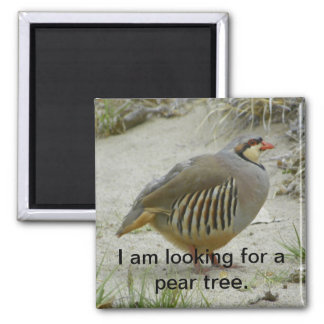 Chukar Partridge game bird hunting sport 2 Inch Square Magnet