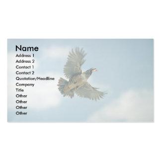 Chukar partridge in flight business card templates