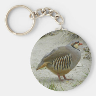 Chukar Partridge Keychain