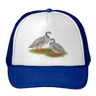 Chukar Partridge Pair Trucker Hat