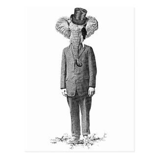 Chulo del elefante tarjetas postales