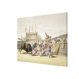 Chulos Playing the Bull, 1865 (colour litho) Canvas Print
