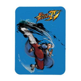 Chun-Li Kick Flexible Magnets