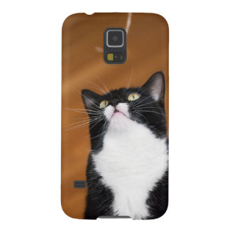 Chunky Cat Photo Galaxy S5 Cover