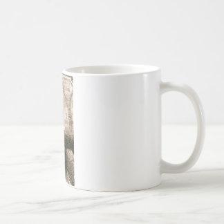 Church Door Classic White Coffee Mug