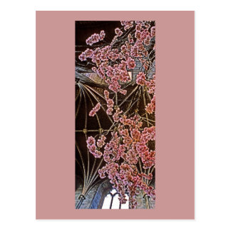 Church Interior with Pink Flowers (2) Postcard