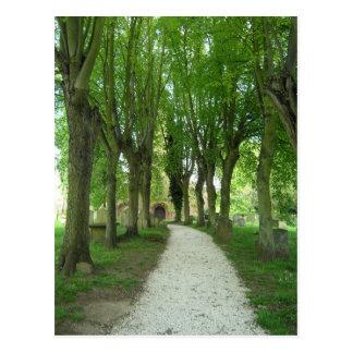 Church path postcard