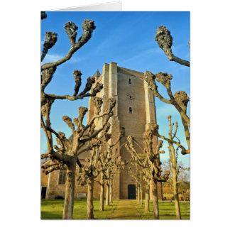 church Sint Anna ter Muiden in Sluis, Netherlands Card