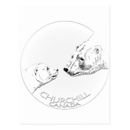Churchill Souvenirs Polar Bear Art Shirts & Gifts Postcard