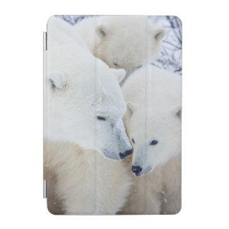 Churchill Wildlife Management Area iPad Mini Cover