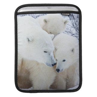 Churchill Wildlife Management Area Sleeve For iPads