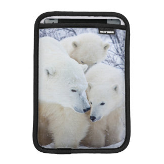Churchill Wildlife Management Area iPad Mini Sleeve