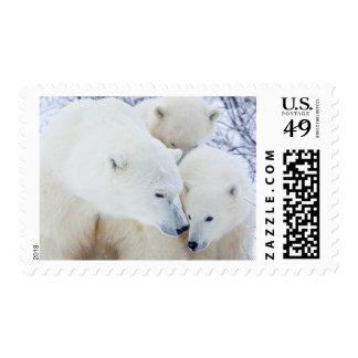 Churchill Wildlife Management Area Stamp