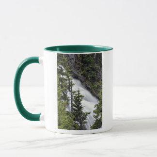 Chush Falls Mug