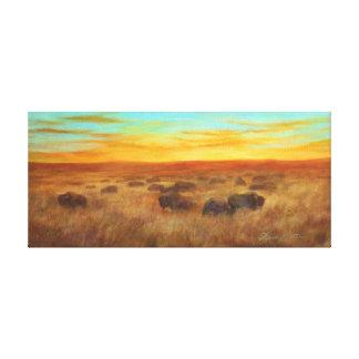 Cibilo Canvas Print